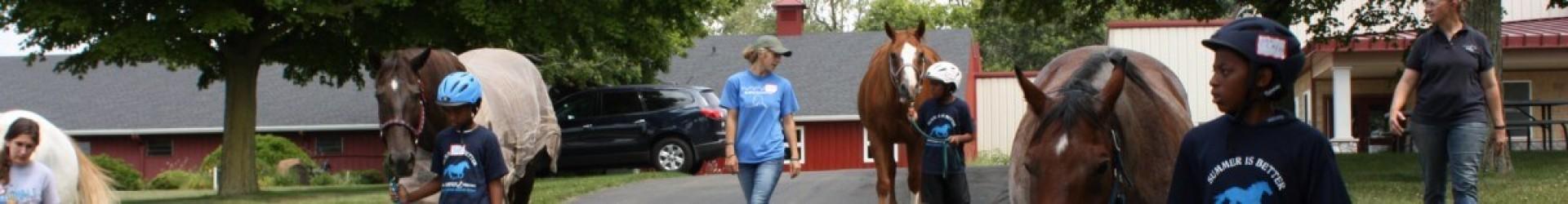 Header - Horses